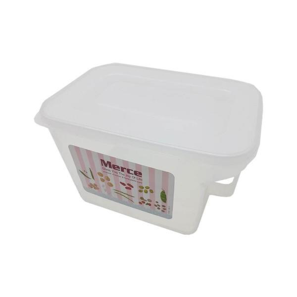 باکس دسته دار یخچالی سایز کوچک کد 57-800